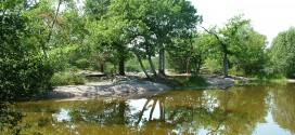 La Forêt de Fontainebleau et ses Gorges